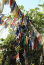 Prayer flags in pokhara nepal Stock Photos