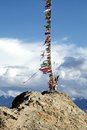 Prayer flags stretching to the nearby hillock, Tsemo monastery Royalty Free Stock Photo
