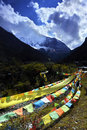 Prayer flags in the tibetan region the are very common in this picture the are arranged to the holy mountain Stock Photography