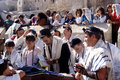 Prayer at the wailing wall Stock Images