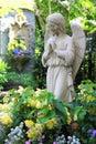 Praying angel Royalty Free Stock Photo