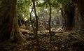 Preah Khan Discovery