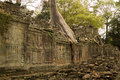 Preah Khan Temple and Tree Stock Image