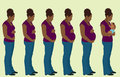 Pregnancy illustration of the the three trimesters of Stock Photo
