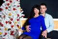 Pregnant couple with christmas tree Stock Image
