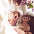 Pregnant woman abdomen with plush toy hedgehog and flowers Royalty Free Stock Photos