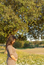 Pregnant woman beautiful relaxing outside in the park Stock Photos