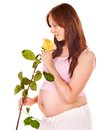 Pregnant woman with flower. Stock Photos
