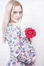 Pregnant woman with flower Stock Photography