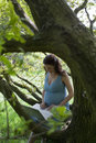 Pregnant woman using laptop in woods smiling young Royalty Free Stock Photos