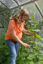 The pregnant woman works in the greenhouse Royalty Free Stock Photo