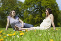 Pregnant women sitting on grass two young against trees Stock Images