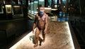 Prehistory exhibition of in the cosmocaixa museum Stock Image