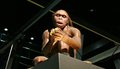 Prehistory exhibition of in the cosmocaixa museum Royalty Free Stock Photography