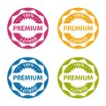 Premium Quality Button - Colorful Vector Illustration - Isolated On White