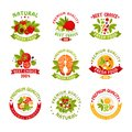 Premium quality food logo templates set, natural products vector Illustrations Royalty Free Stock Photo