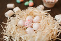 Preparation for easter. White eggs in nest closeup Royalty Free Stock Photo