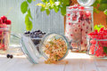 Preparation products processed fresh colorful summer fruits jars of in Royalty Free Stock Photo