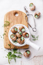 Preparation of snails with garlic butter sauce and fresh greens Royalty Free Stock Photography