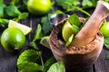Preparation of summer mojito drink ingredients Royalty Free Stock Images