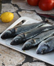 Prepared marine fish for barbecue on the open fire place Stock Image