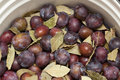 Prepared for pickling plums Royalty Free Stock Photography