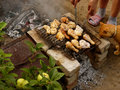 Preparing chicken on grill in the garden with participation of red cat Stock Image