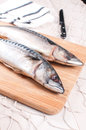 Preparing cutting mackerel fish knife vertical Royalty Free Stock Image