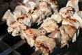 Preparing meat grilled shashlik Stock Images