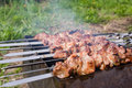 Preparing Shashlik Stock Images