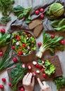 Preparing spring vegetable healthy salad with radish, cucmber, savoy cabbage Royalty Free Stock Photo