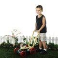 Preschooler Mowing Royalty Free Stock Photo