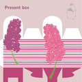 Present box with hyacinth Stock Image