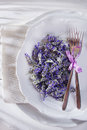 Presentation of lavender flower summer in spa area Royalty Free Stock Image