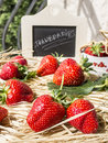 Presentation of strawberries on a thatch fresh bio title in chalk blackboard Royalty Free Stock Photo