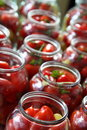 Preservation tomato tomatoes greens pepper sweet in glass jars preparation for Stock Photos