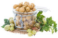 Preserved gooseberries on white portion of with some fresh fruits isolated Stock Images