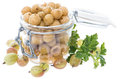 Preserved gooseberries on white portion of with some fresh fruits isolated Royalty Free Stock Images