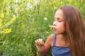 Preteen girl admiring field flowers Stock Photo