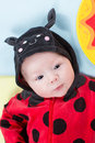 Pretty baby girl, dressed in ladybug costume on green background Royalty Free Stock Photo