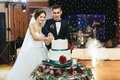 Pretty bride and groom cut the wedding cake at the first time Royalty Free Stock Photo