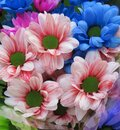 Pretty Bright Closeup Purple, Blue And Pink Daisy Flowers Bouquet Royalty Free Stock Photo