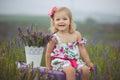 Pretty cute little girl is wearing white dress in a lavender field holding a basket full of purple flowers Royalty Free Stock Photo
