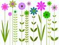 Pretty flowers illustration a graphic image of colourful and long stems Stock Image