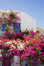 Pretty Garden, Santorini, Greece Royalty Free Stock Photos