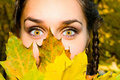 Pretty girl and autumn leaves Royalty Free Stock Image