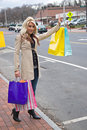 Pretty Girl Shopping Royalty Free Stock Photos