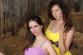 Pretty girls in a barn two beautiful wearing colorful dresses Stock Images
