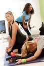 Pretty girls exercising in health club young Stock Image