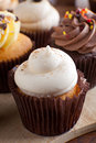 Pretty Gourmet Cupcakes Iced Royalty Free Stock Image